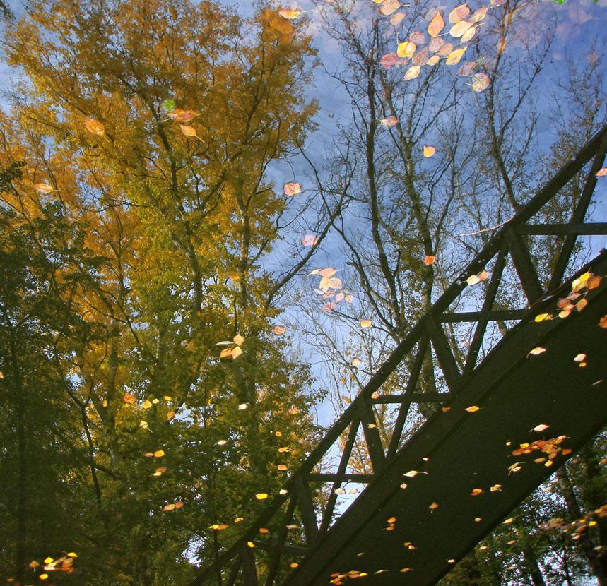 """фото """"..осенний мост.."""" метки: пейзаж, вода, осень"""