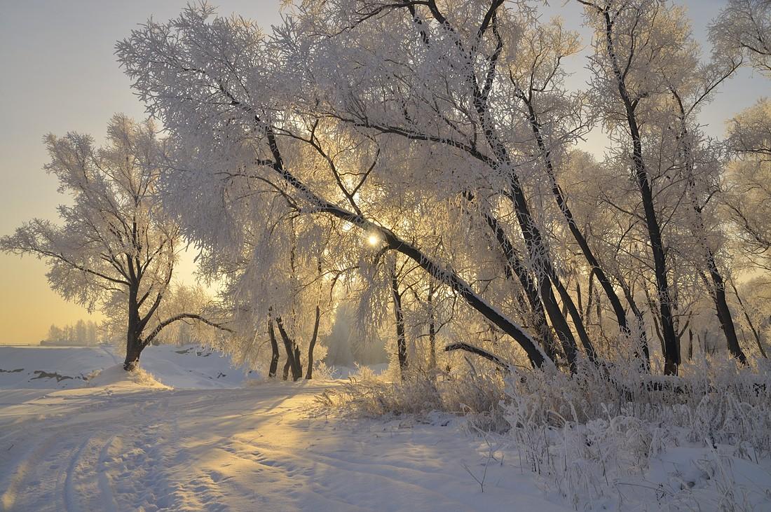 "фото ""Зимнее утро"" метки: пейзаж, закат, зима"