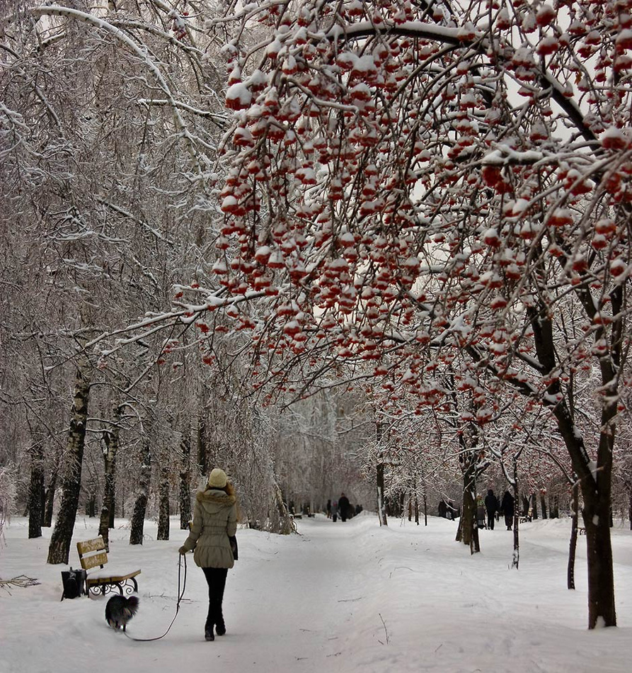 """photo """"The young lady with a dog"""" tags: landscape, genre, winter"""