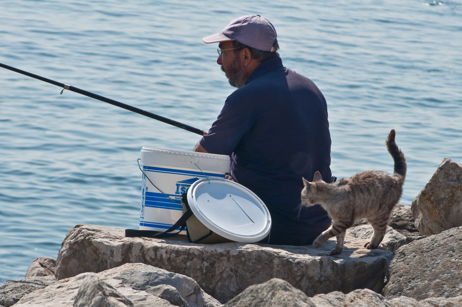 "photo ""SMELS FISH"" tags: nature, humor, pets/farm animals"