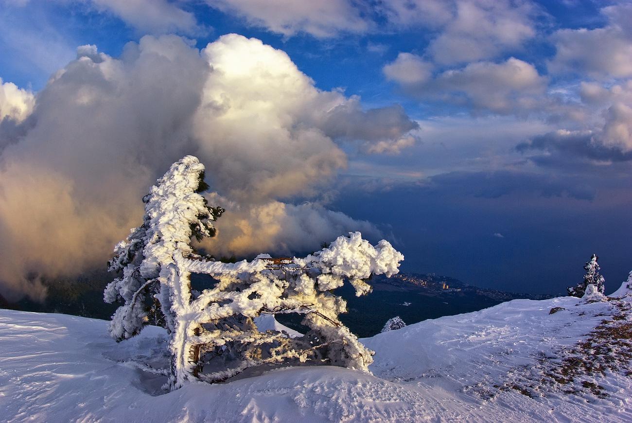 """фото """"Вечерняя, почти весенняя..."""" метки: пейзаж, закат, зима"""
