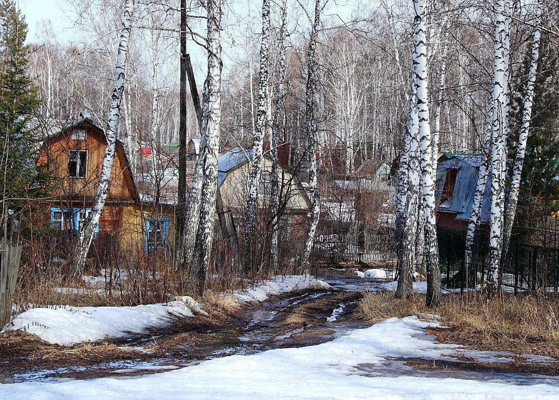 "фото ""Весеннесадовый мотив"" метки: пейзаж, зима"