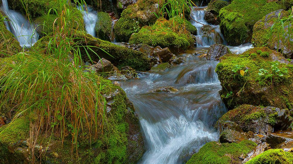"""фото """"у Водопада"""" метки: пейзаж, вода, лес"""