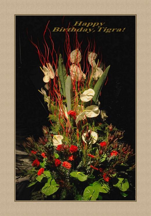 """фото """"HAPPY BIRTHDAY,TIGRA!!!"""" метки: природа, цветы"""