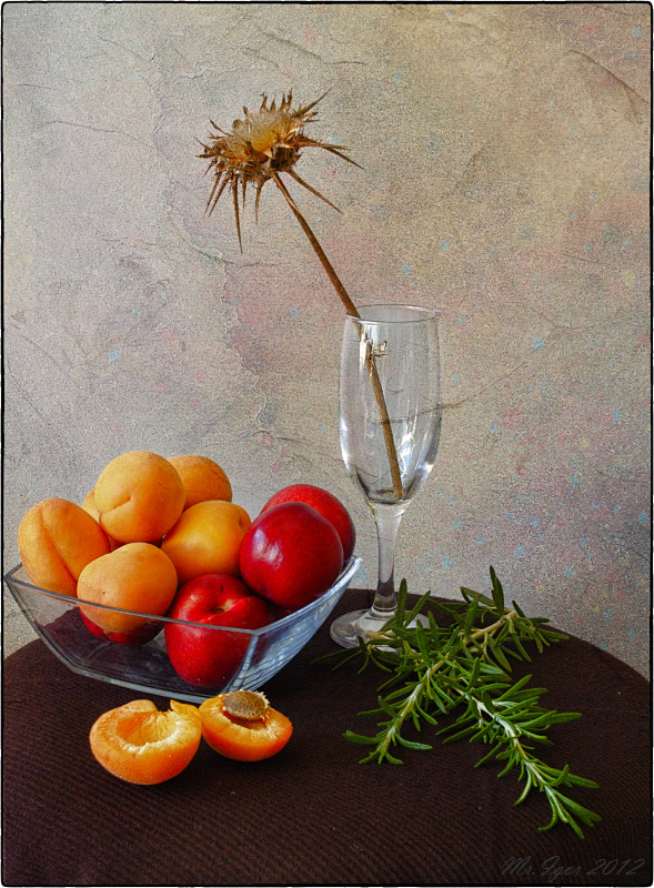 "photo ""Still life with an apricot and rosemary"" tags: still life,"