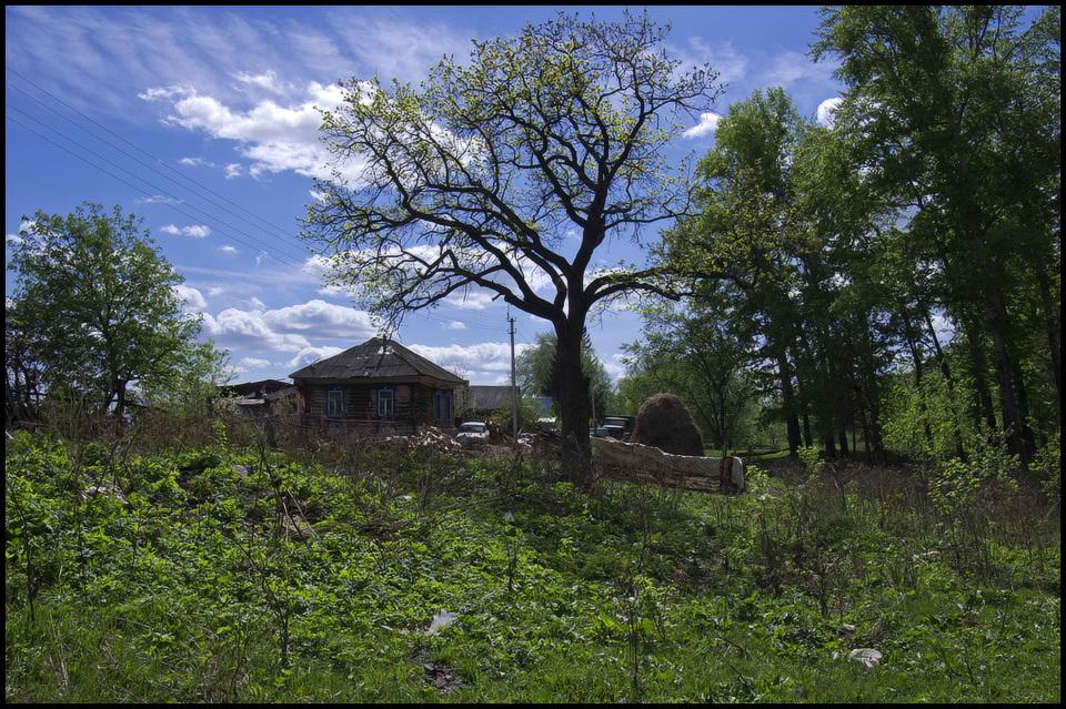 "фото ""Май в деревне..."" метки: пейзаж, весна"