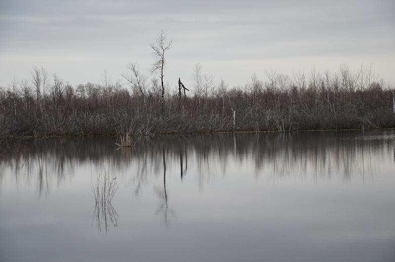 "фото ""Дикие места"" метки: пейзаж, природа, вода"