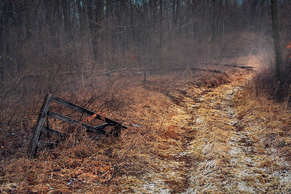 "photo ""The Road Less Traveled"" tags: landscape,"