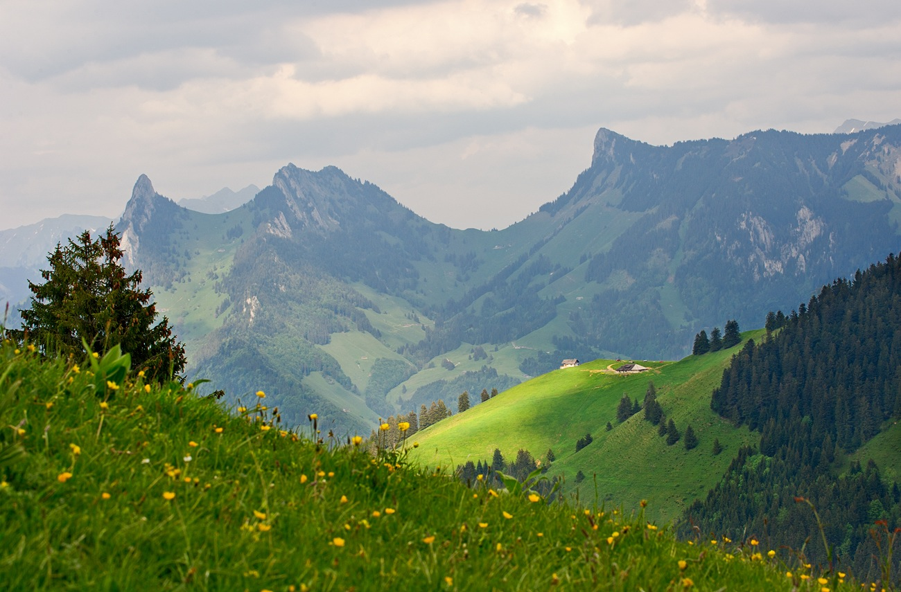"""photo """"***"""" tags: landscape, mountains, summer"""