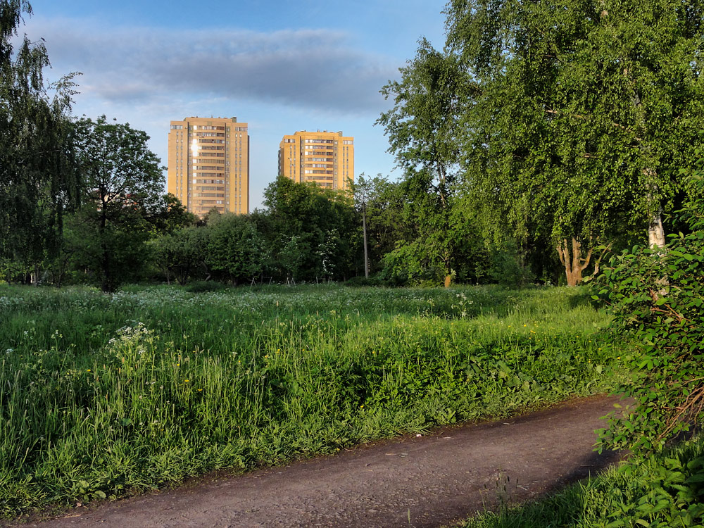 """фото """"Лето в моем парке"""" метки: ,"""