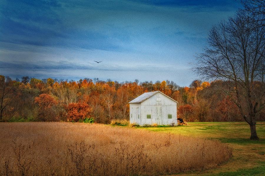 """photo """"Autumn Memories"""" tags: landscape,"""