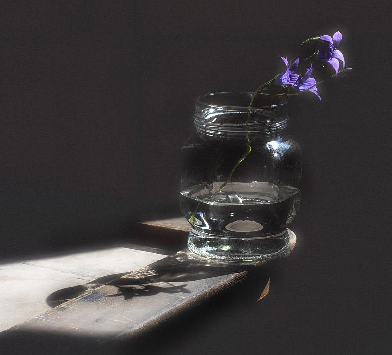 """фото """"Свет и тени"""" метки: натюрморт,"""