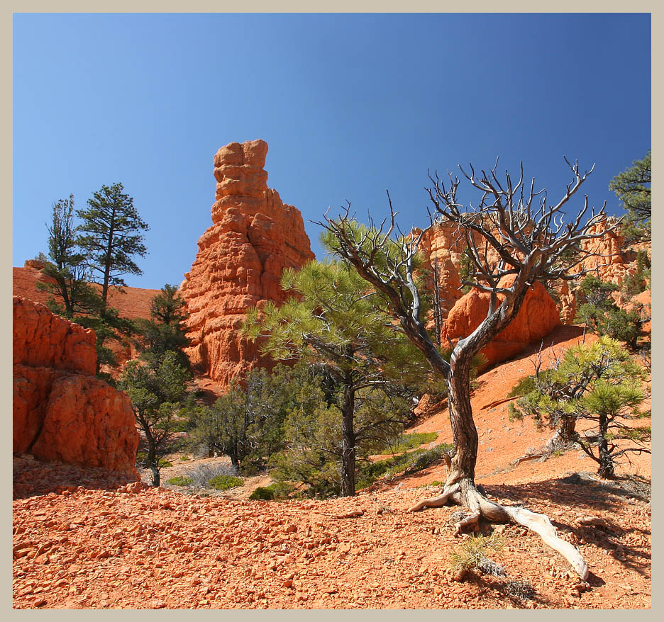 "photo ""/\_Y"" tags: landscape, travel,"