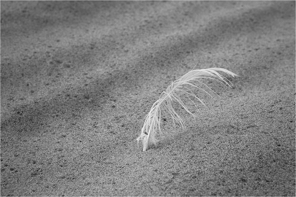 "photo ""untitled"" tags: black&white,"