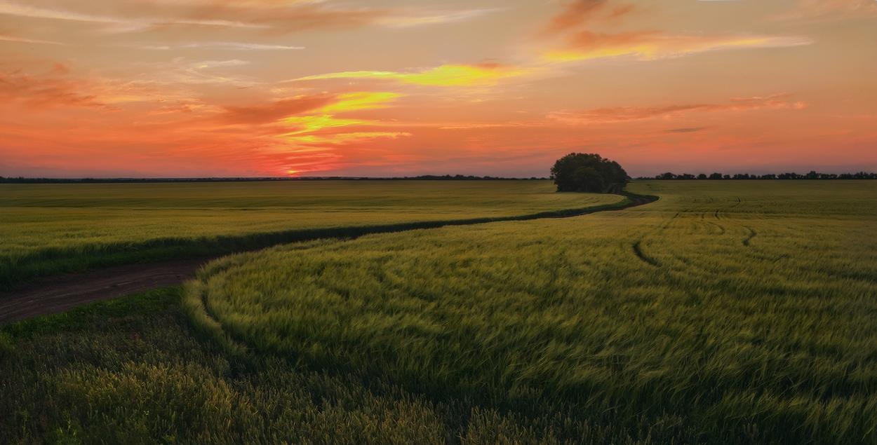 """фото """"Под светом заката"""" метки: пейзаж, закат"""