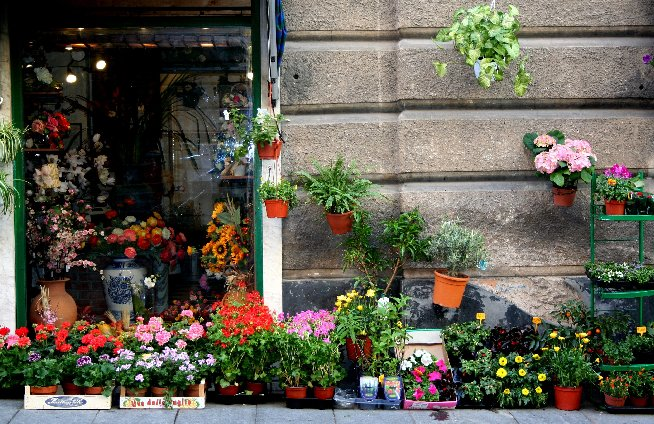 "photo ""selling flowers"" tags: reporting,"