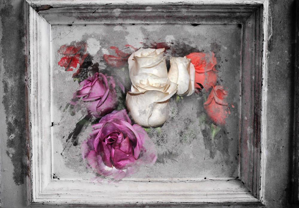 """фото """"розы"""" метки: натюрморт,"""
