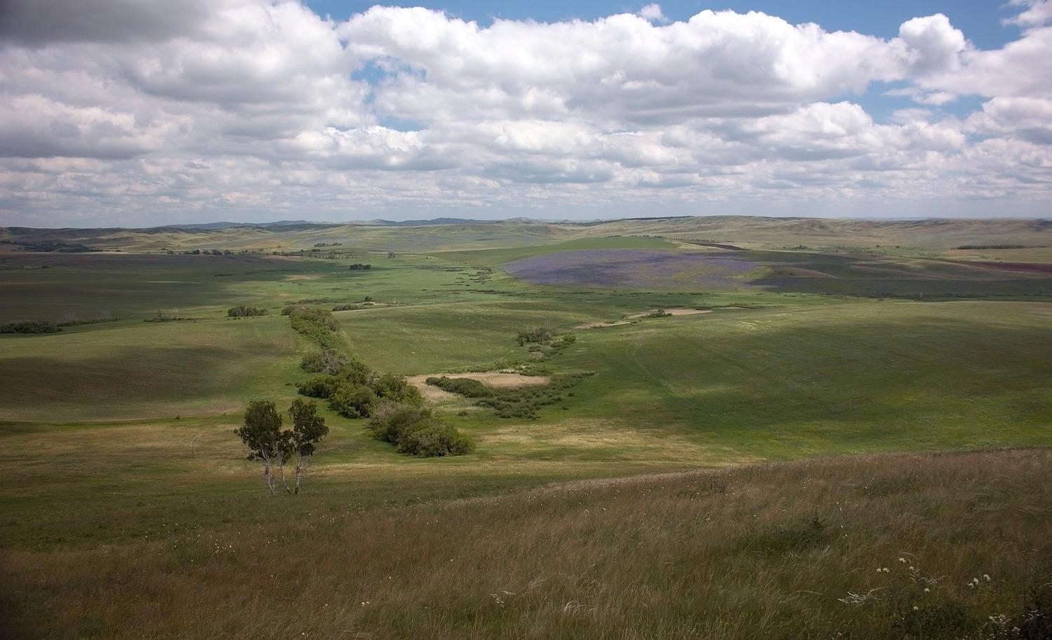 """фото """"Вероника с холма."""" метки: пейзаж,"""
