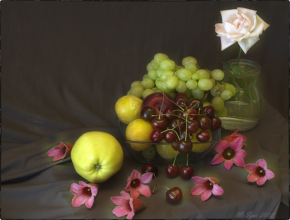 "photo ""Still life with sweet cherry and a rose"" tags: still life,"