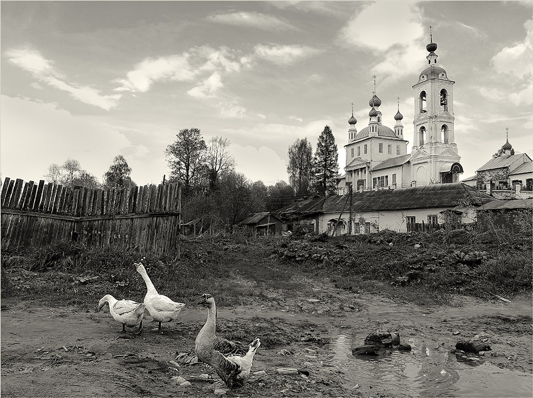 """photo """"***"""" tags: architecture, nature, landscape, pets/farm animals"""