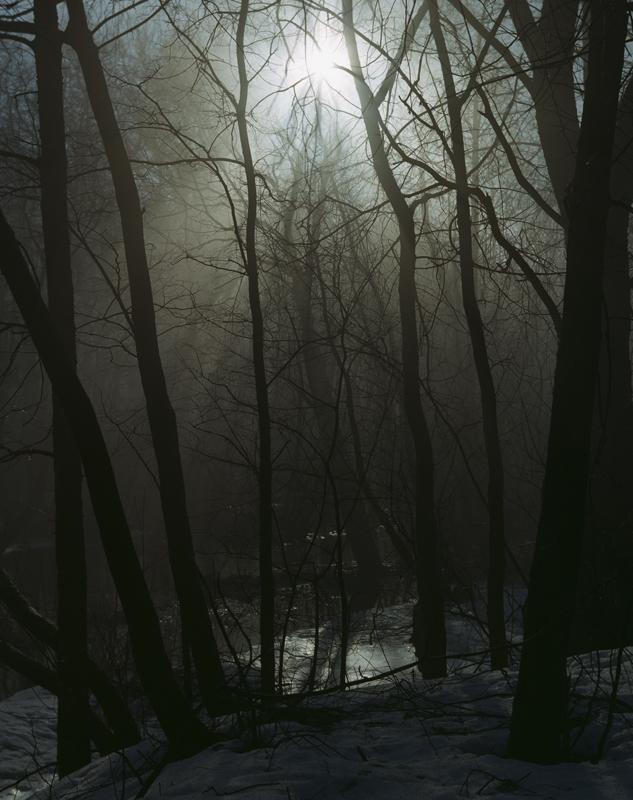 """фото """"Пробуждение"""" метки: пейзаж,"""