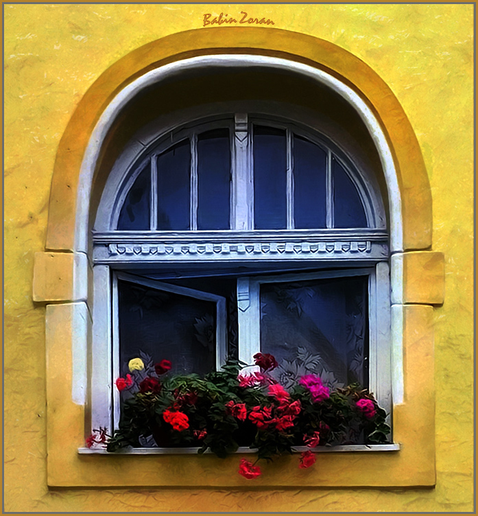 "photo ""yellow flower"" tags: architecture, landscape,"