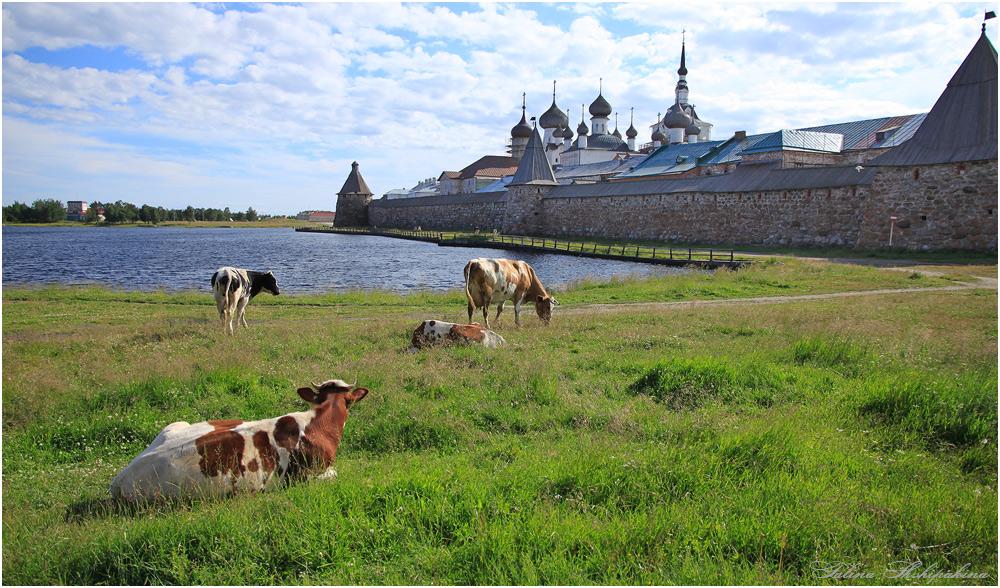 "photo ""Тихая жизнь острова"" tags: architecture, landscape,"