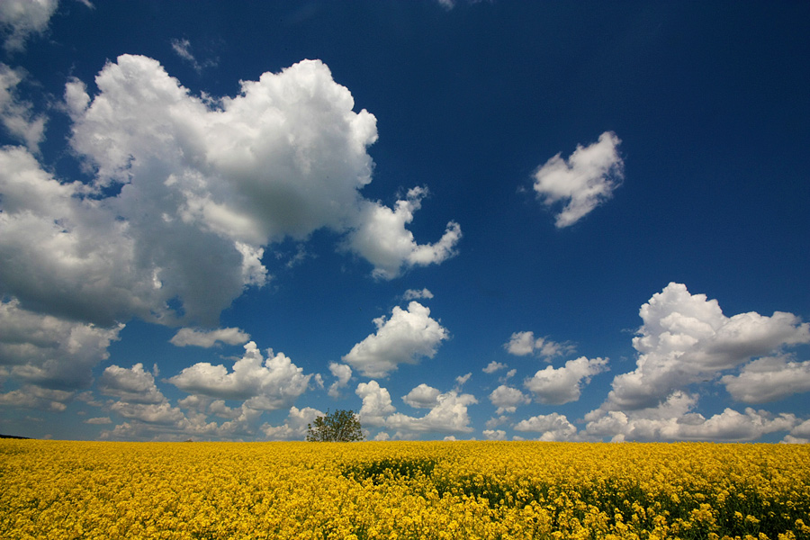 "photo ""***"" tags: , clouds, sky, spring"
