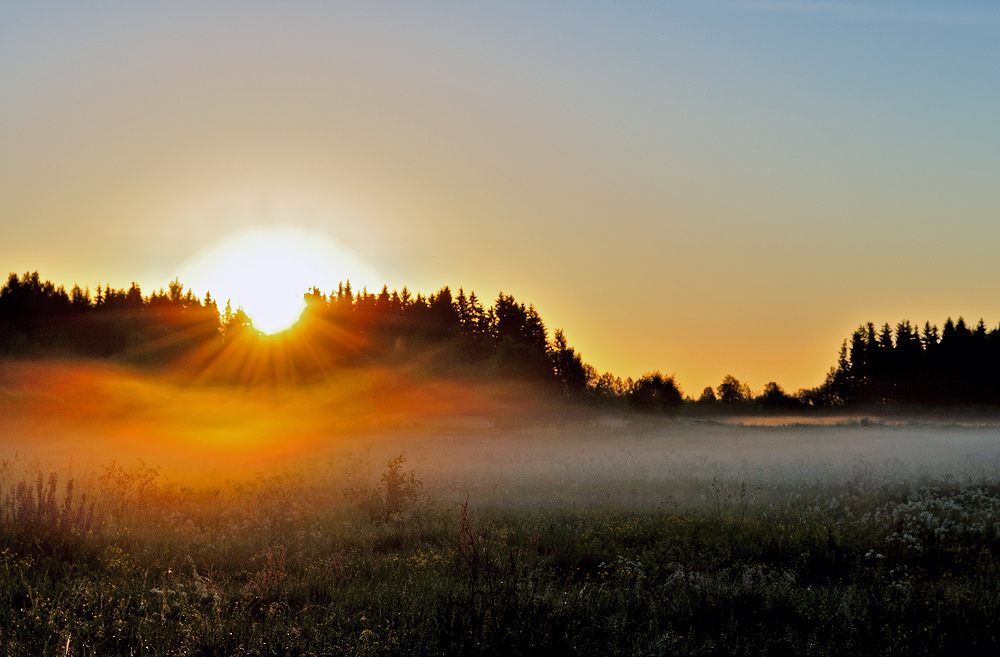 "фото ""Июньским туманным утром."" метки: пейзаж, закат"