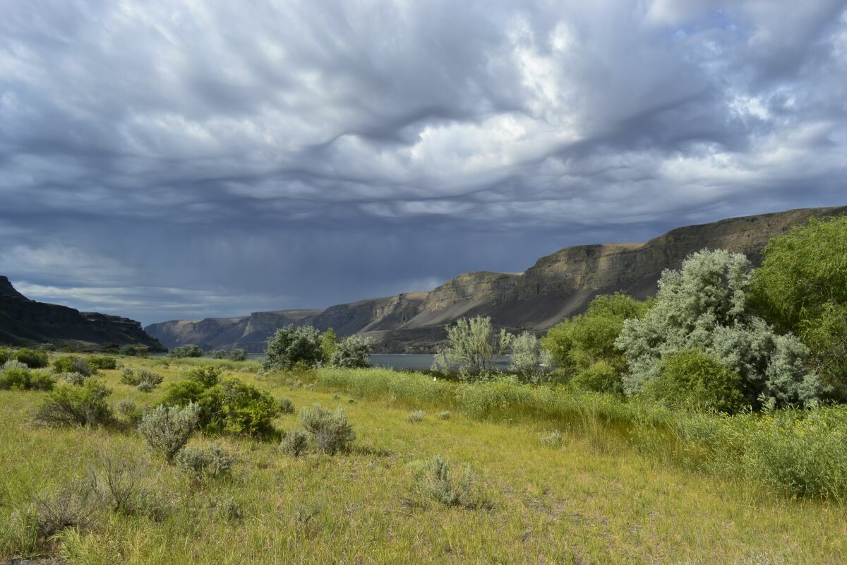 """photo """"туча ....."""" tags: landscape,"""