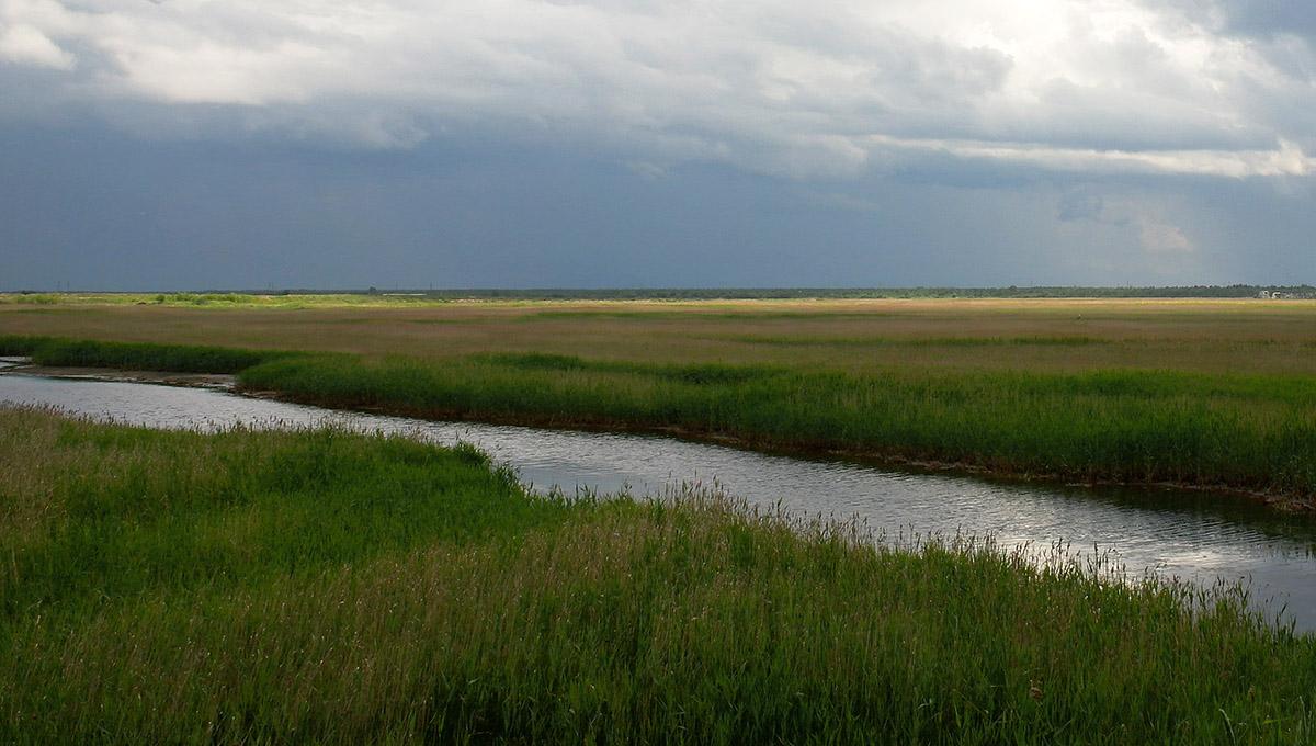 "фото ""River"" метки: пейзаж, вода, лето"