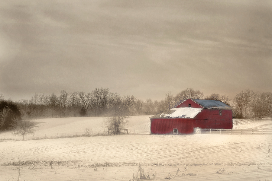 """photo """"Winter Red"""" tags: landscape, winter"""
