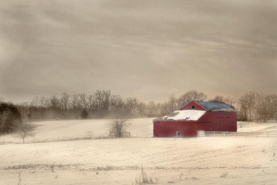"""фото """"Winter Red"""" метки: пейзаж, зима"""