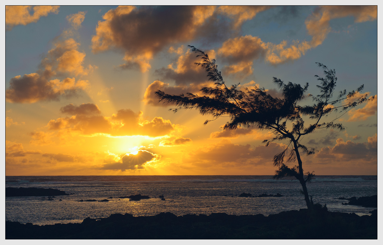 "photo ""***"" tags: landscape, Africa, clouds, evening, light, ocean, sea, sun, sunrise, sunset, tree, water, Маврикий, лучи"