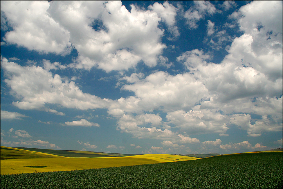"photo ""***"" tags: landscape, clouds, field, sky, spring"