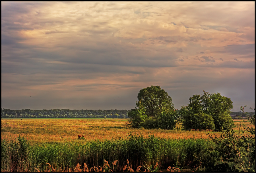 "photo ""***"" tags: landscape, nature, summer"
