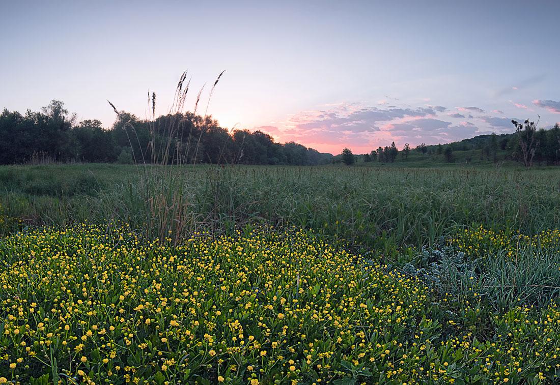 """фото """"весенняя - рассветная"""" метки: пейзаж,"""
