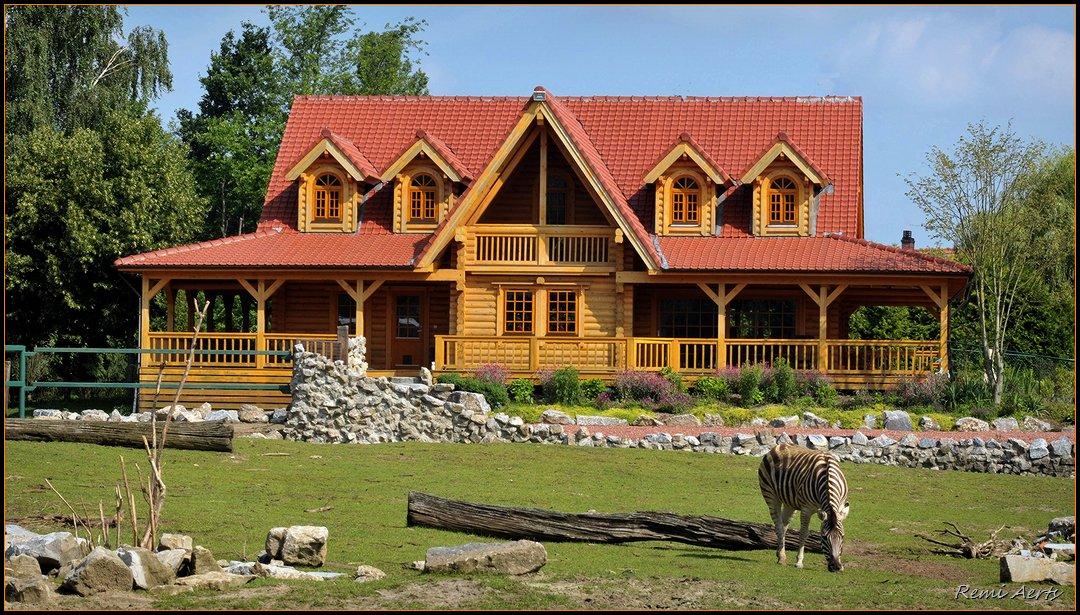 "фото ""house with zebra"" метки: архитектура, пейзаж, лето"