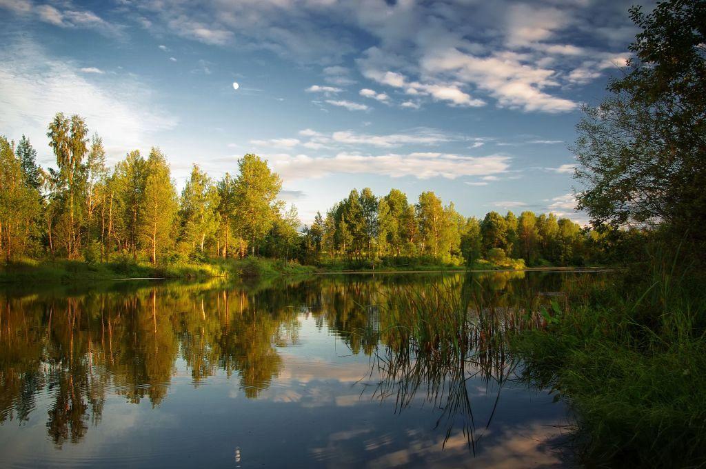 """фото """"Лунный летний вечер"""" метки: пейзаж, лето"""