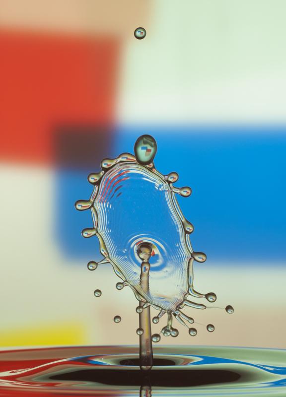 """фото """"liquidart"""" метки: макро и крупный план, натюрморт,"""