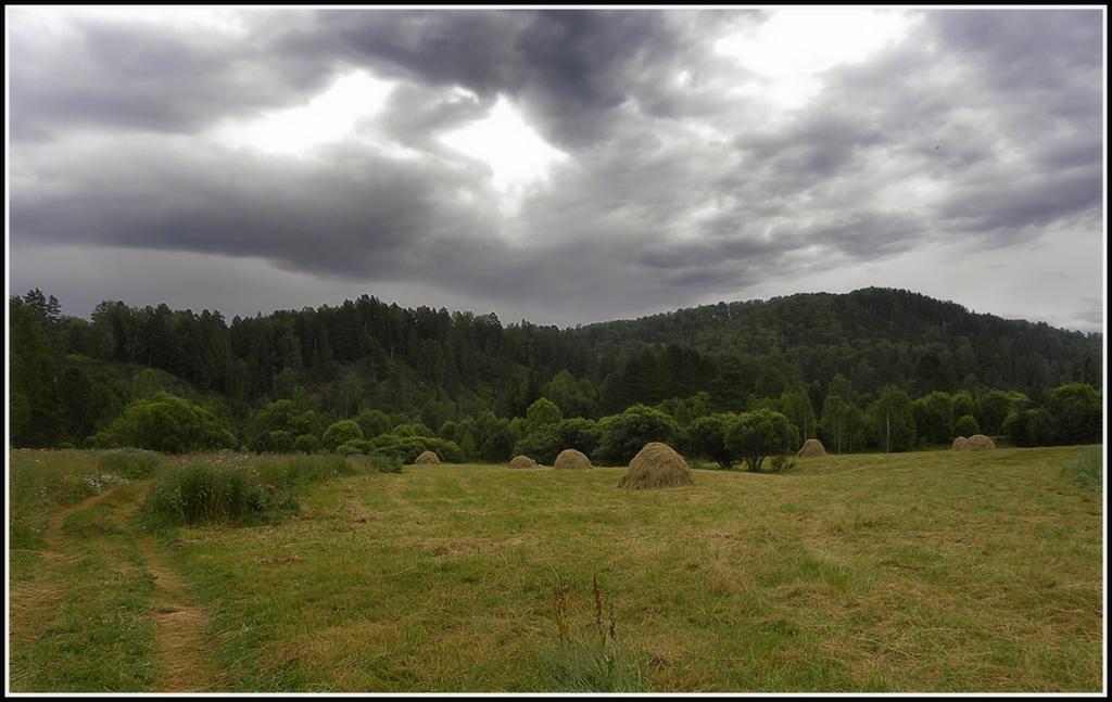 """фото """"Пасмурный день"""" метки: пейзаж, путешествия, Алтай, горы, пасмурно, покос"""