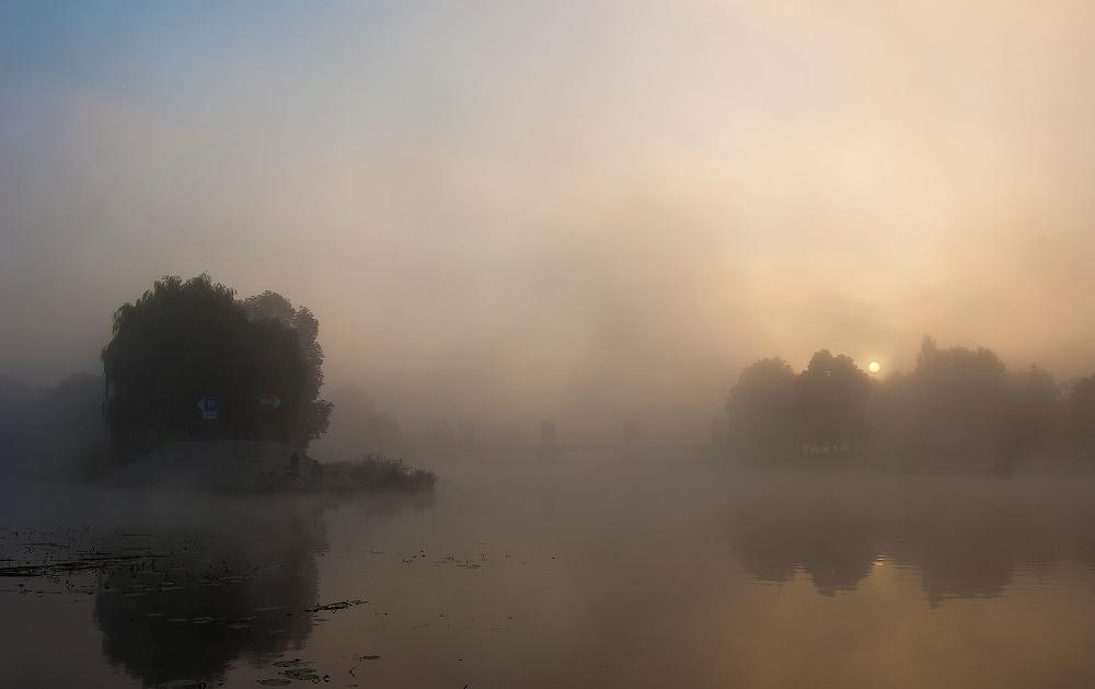 имя муса фото картина туман недорогой удобный