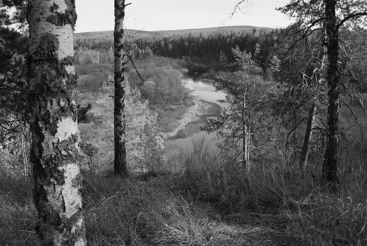"""фото """"Заповедник Оленьи Ручьи"""" метки: пейзаж, черно-белые,"""