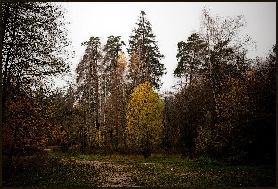 """фото """"Осенний"""" метки: пейзаж,"""