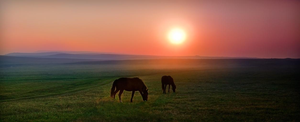 """фото """"По дороге в горы"""" метки: пейзаж,"""