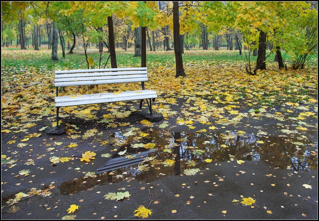 """фото """"в осеннем парке 2"""" метки: город, пейзаж, Москва, дождь, осень, парк"""