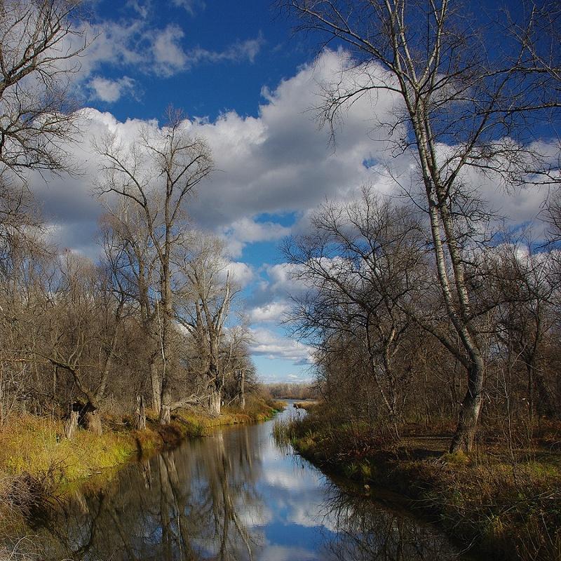 "фото ""Осенее..."" метки: пейзаж, вода, лес, облака"