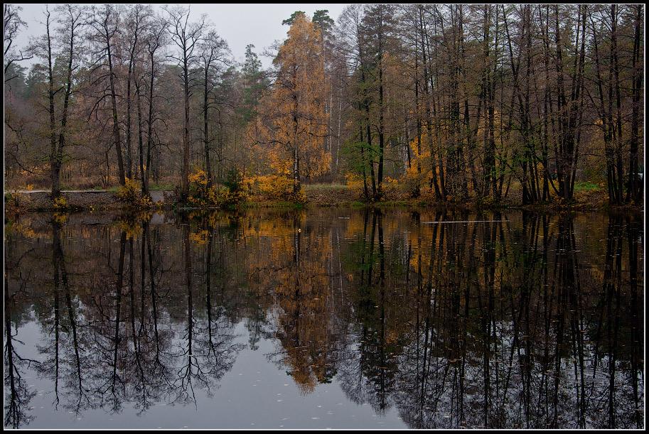 """фото """"Осень с отражением"""" метки: пейзаж,"""