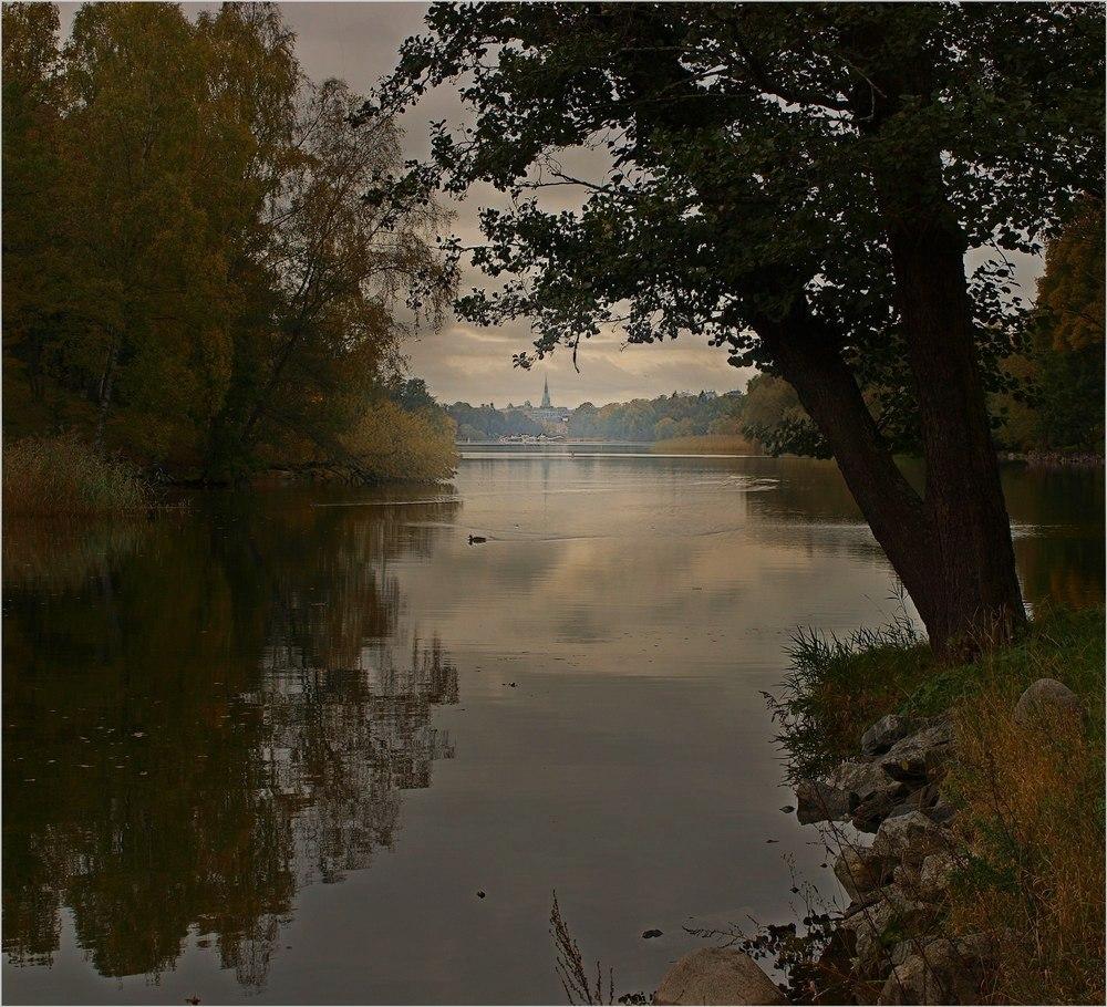 "photo ""Тихая осень"" tags: landscape,"