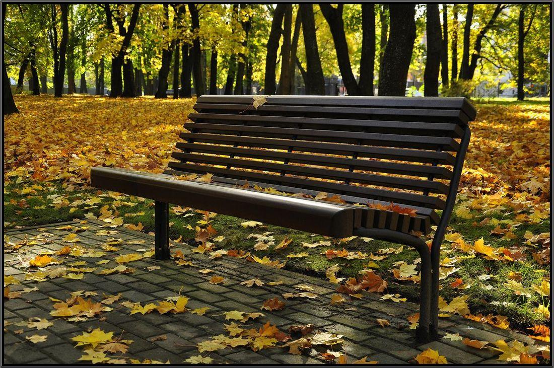 """фото """"Осенняя"""" метки: пейзаж,"""